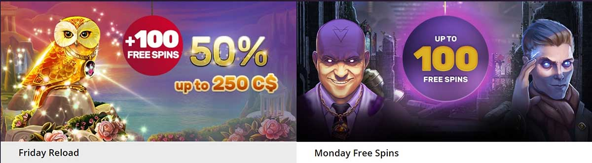 Regular bonuses at Playamo casino